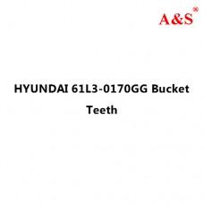 HYUNDAI 61L3-0170GG Bucket Teeth
